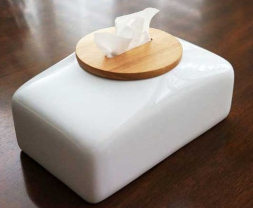 Mollaspace Tissue Holder