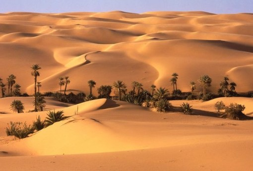 The Top 10 Largest Subtropical Deserts in the Entire World