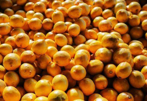Egypt Orange Production