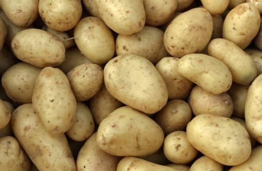 The Top 10 Most Potato Producing Countries in the Entire World