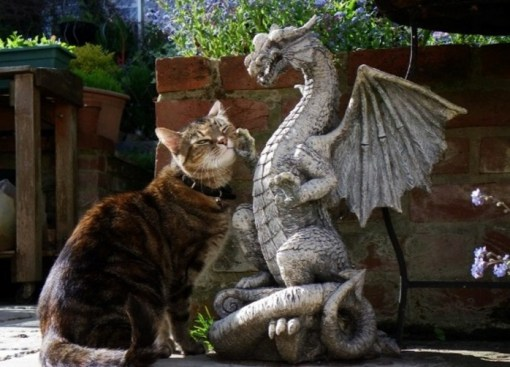 Cat Rubbing on a Dragon Statue