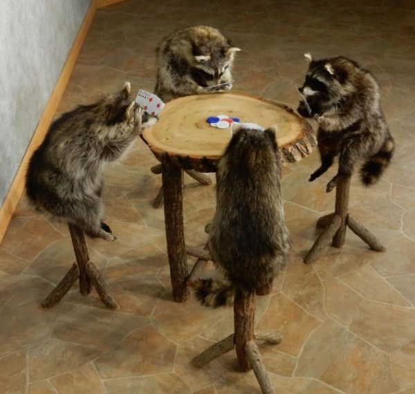 Racoons Playing Poker