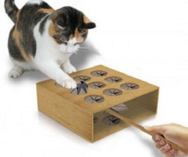 Cat Whack A Mole Toy