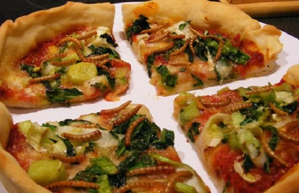 The Mealworm Meal Pizza