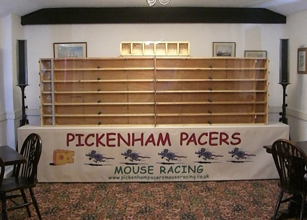 Mouse Racing
