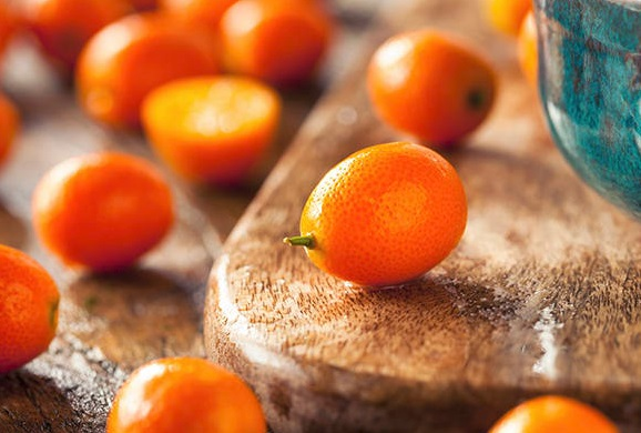 Kumquats (Citrus japonica)