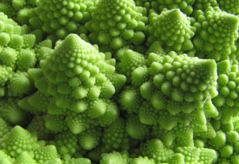 Ten of the Worlds Craziest Looking Vegetables and What They Taste Like