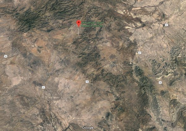 Chihuahuan Desert in America