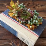 Ten Amazing Things to Can Make and Do With Old Books