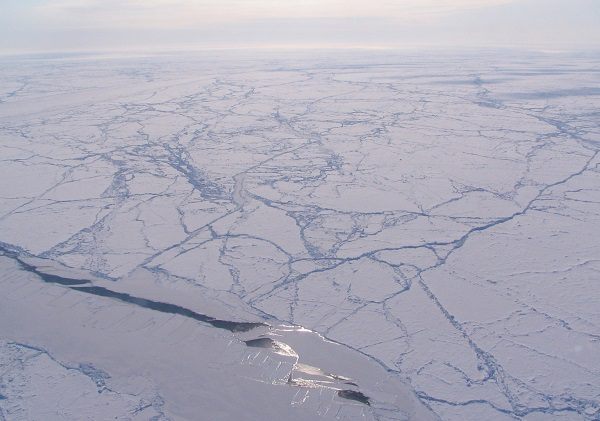 Arctic in Arctic