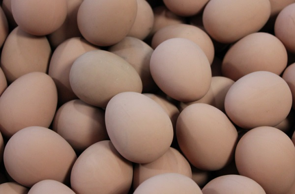 Eat Eggs on a Ketogenic Diet