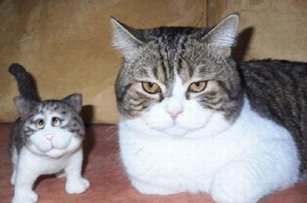 Cat Next to Cat Plushie