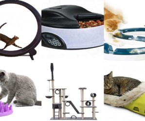 Ten of the Very Best Gifts for Cats Money Can Buy in 2018