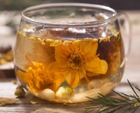 Top 10 Benefits of Jasmine Tea You Never Heard Before