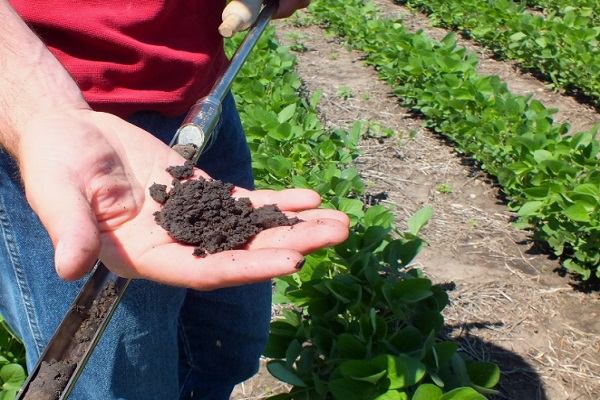 Organic family builds healthy soils