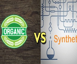 Top 10 Reasons Why You Should Choose Organic Over Synthetic Products