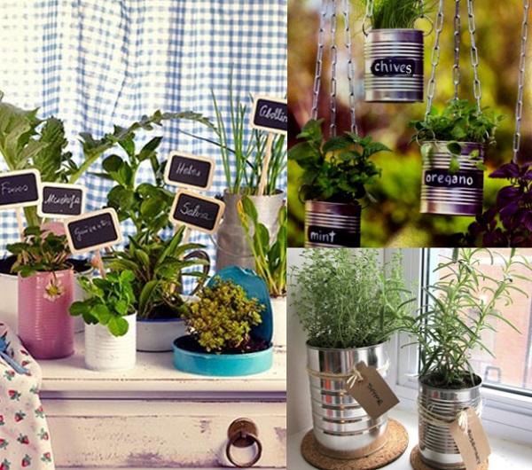 Create Your Own Herb Garden