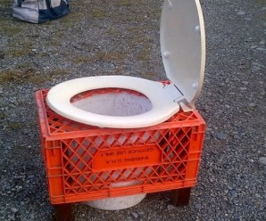 Ten Weird and Crazy Toilet Designs You Won't Believe Someone Used