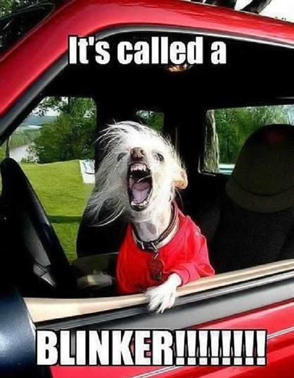 Keep your Road Rage on Check