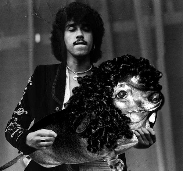 Phil Lynott the Bass Dog