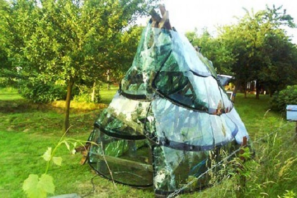 A Garden Shed Made From Windshields