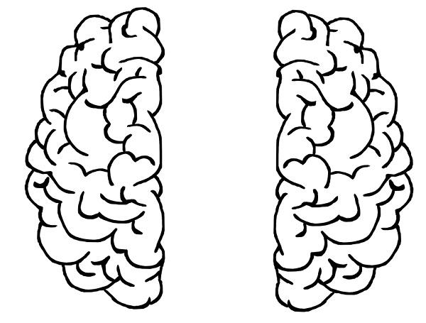 Split Brain Disorder