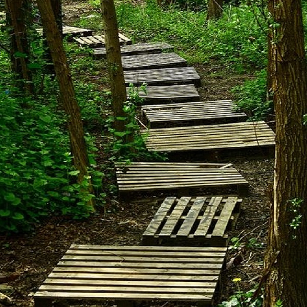 A Garden Path Made With Wooden Pallets