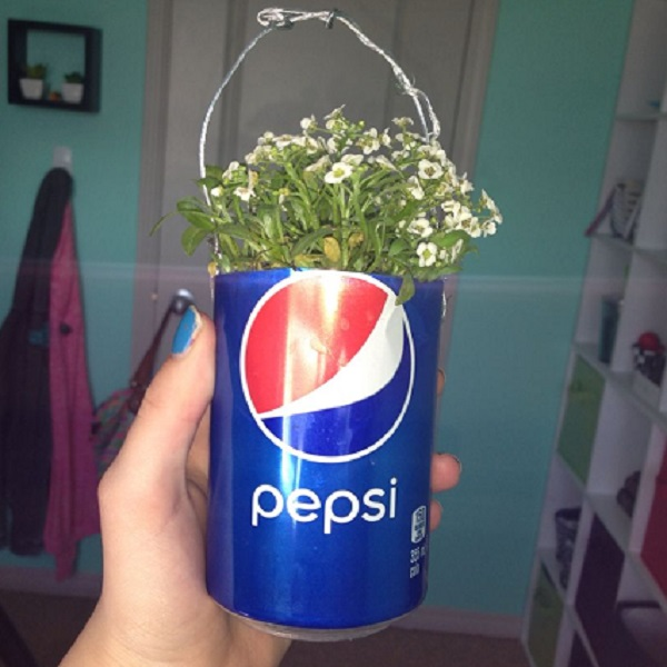 Pepsi Can Planter