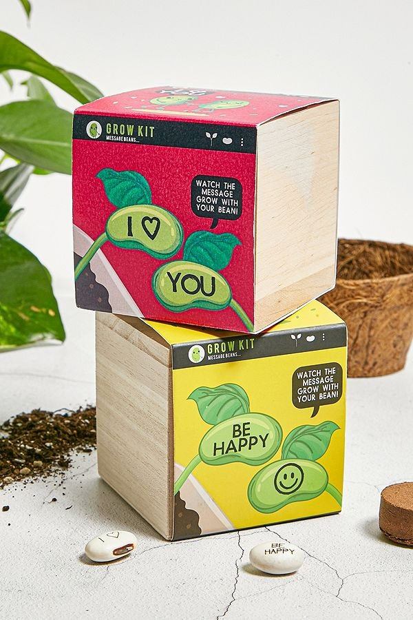 Grow Your Own Message Bean Gift Idea