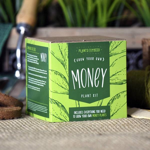 Grow Your Own Money Gift Idea