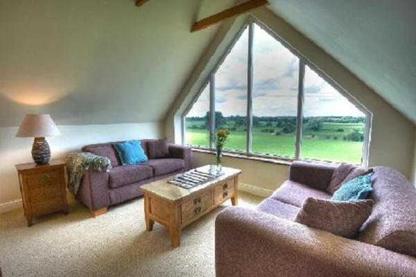 Turn Your Loft Conversion Into a Reading Room