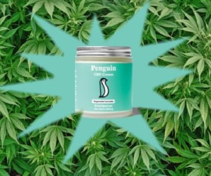 Top 10 Things You Need to Know About CBD Topical Creams