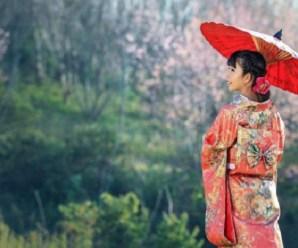 Ten Great Reasons Why You Should Visit Japan