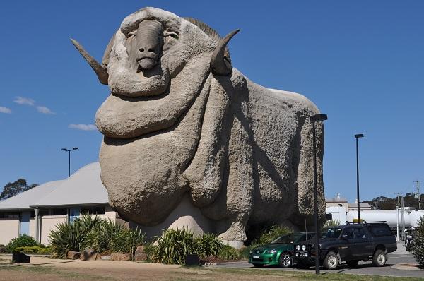 The Big Merino, Australia