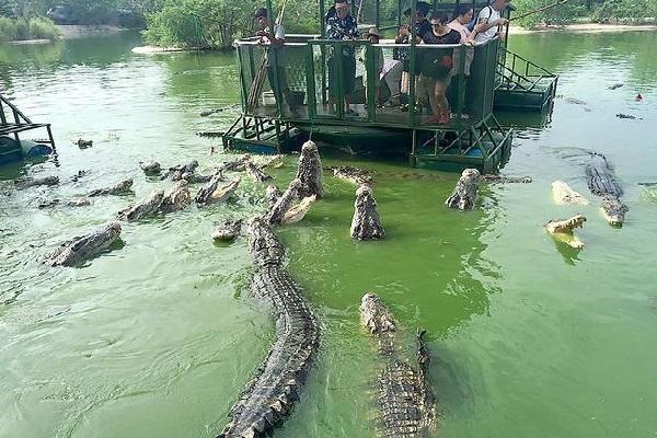 Pattaya, the Elephant Kingdom in Thailand