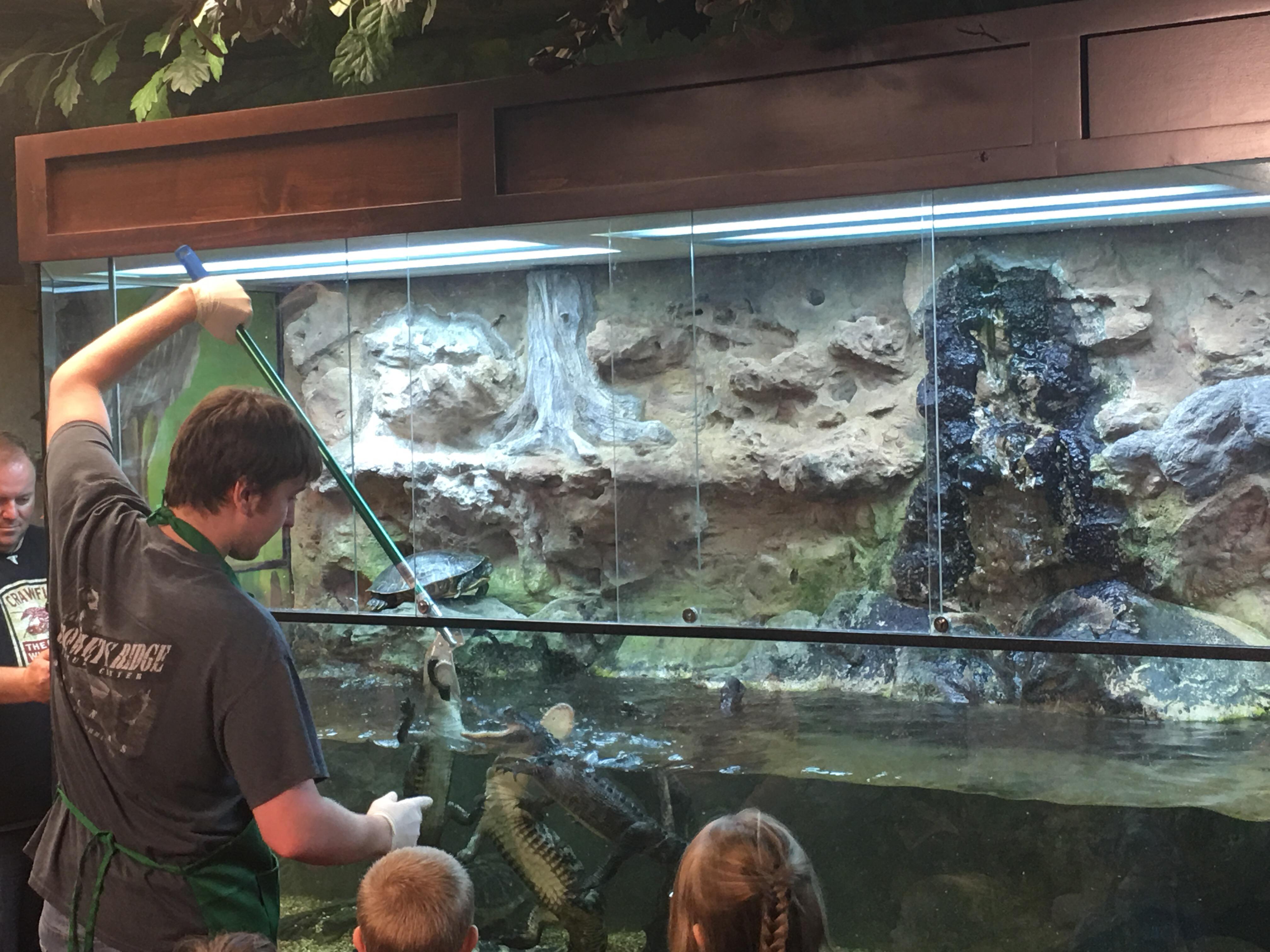 Arkansas Game And Fish Nature Center Jonesboro