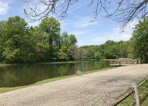 Dobbs Memorial Park Pond