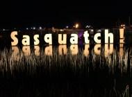 [Preview] Sasquatch! Festival 2014