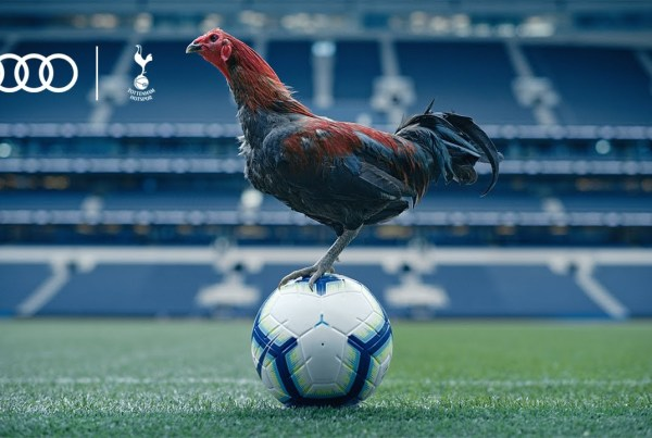 Audi, Tottenham Hotspur And A Chicken Show Us Around White Hart Lane image of spurs
