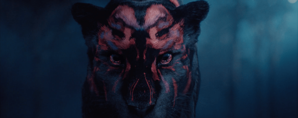 Watch The Incredible CGI Title Sequence For Forward Festival image of panther