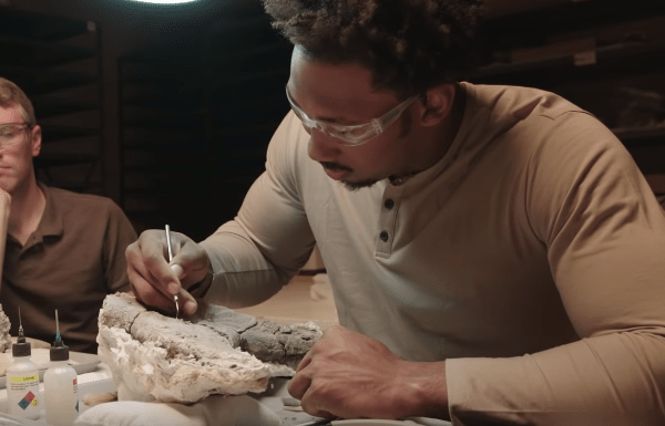 This American Football Star Is Training To Become A Palaeontologist image of Myles Garrett