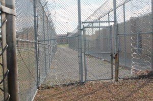 Inside the fence