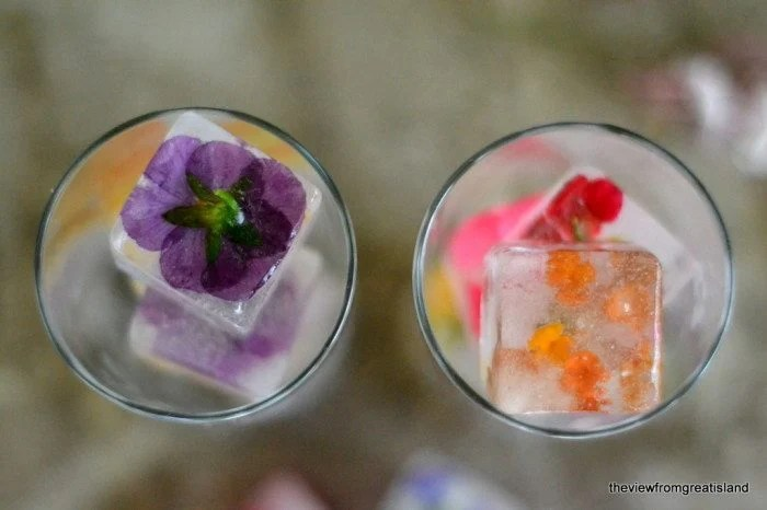 Overhead photo of two glasses filled with Edible Flower Ice Cubes.