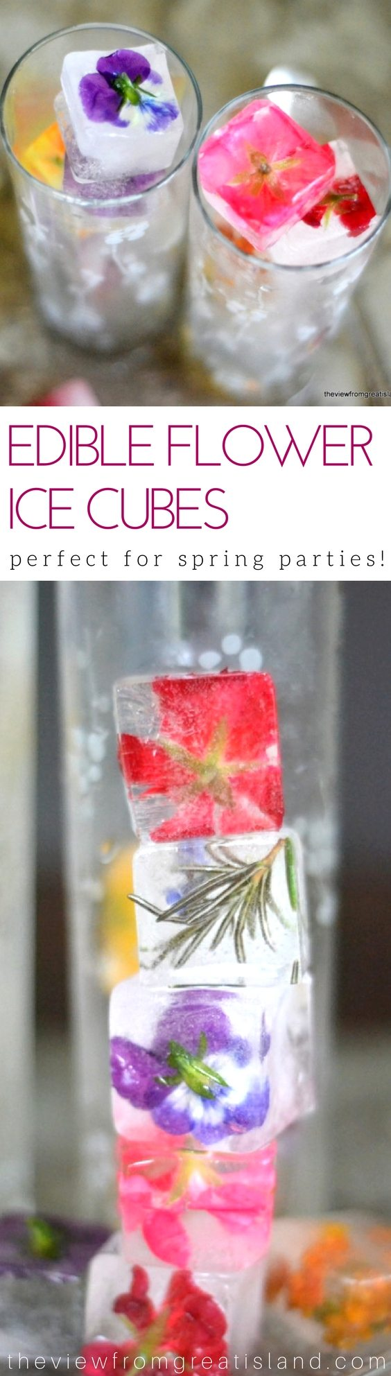 Edible Flower Ice Cubes ~ up your beverage game this season with the prettiest ice cubes ever! #spring #edibleflowers #flowericecubes #entertaining #weddingshower #brunch #flowers #drinks