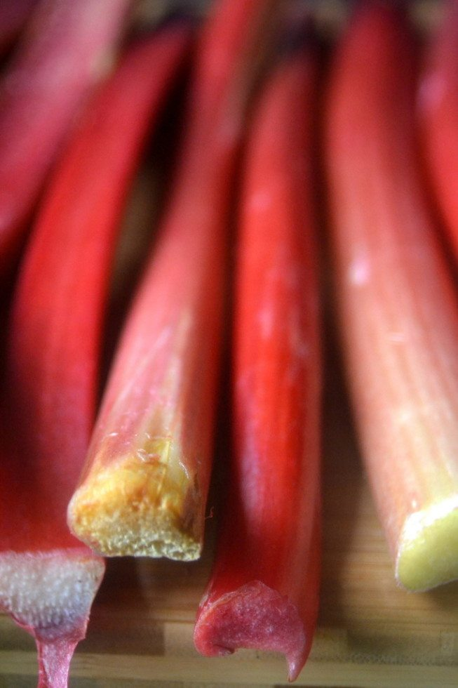 Photo of rhubarb for Rhubarb and Greek Yogurt Popsicles.