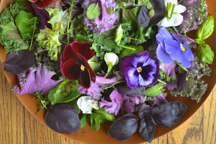 kale and herb salad with edible flowers