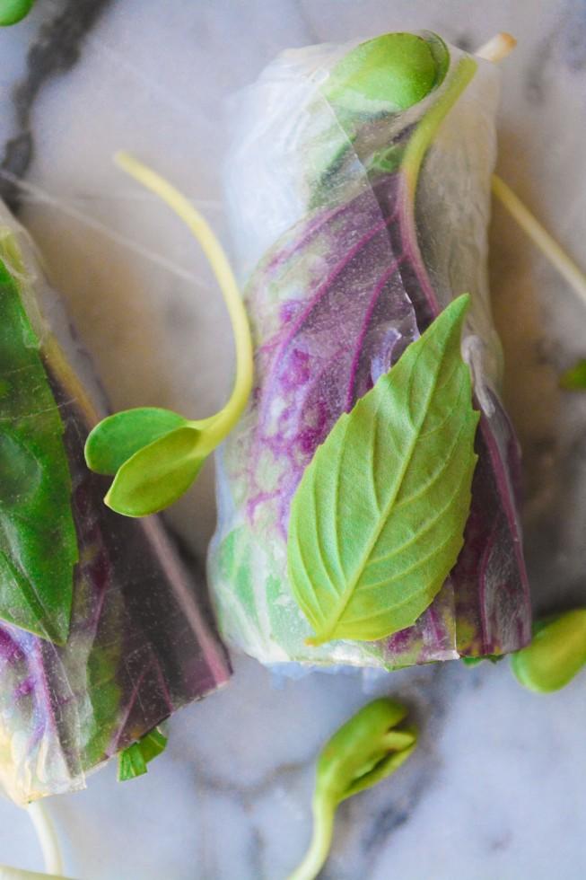 Fresh and healthy Vietnamese summer rolls