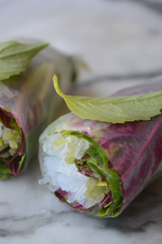 summer rolls with greens and glass noodles
