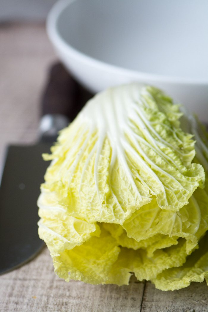 Photo of a head of chinese cabbage for chinese chicken salad.