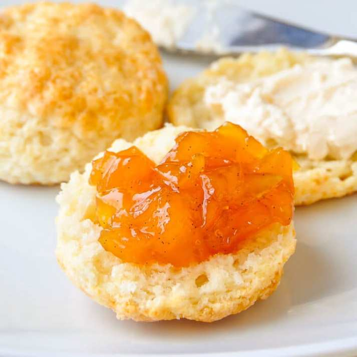 The ULTIMATE Guide to Freezer Jam ~ vanilla mango jam